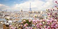 13-0563-PR Декор. панно на флизе Париж в цветах 2,5*1,3м