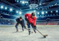 Легенды хоккея К-151 200х140 Фотообои ТУБА/Симфония