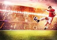 Футбольный триумф К-155 140х100 Фотообои ТУБА/Симфония