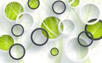 GM-015 300/270 3D Фотообои   Объемные зеленые круги