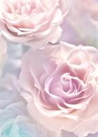 21-0146-FR Декор. панно на флизе Розовые розы 2*2,8м